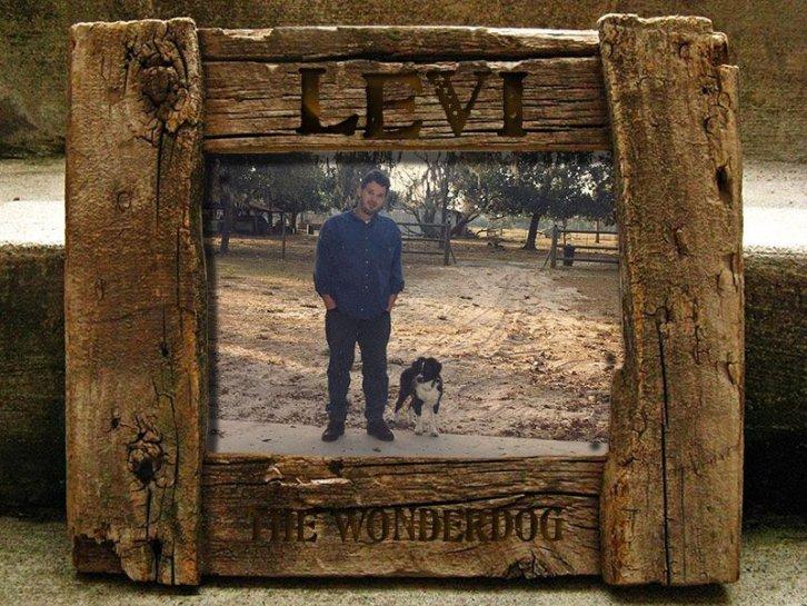 P.Steve & Levi